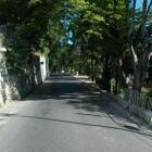 600-rues_chateau_de_nice